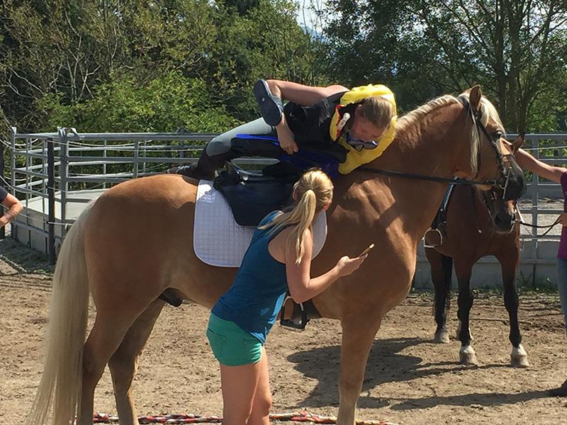 Körperbeherrschung par excellence beim Pferdeschwimm-Bewerb
